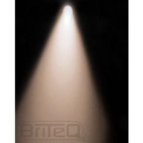 COB PAR56-100WW SILVER