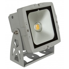 F1 LDP - COBWASH 50WW - LED projector
