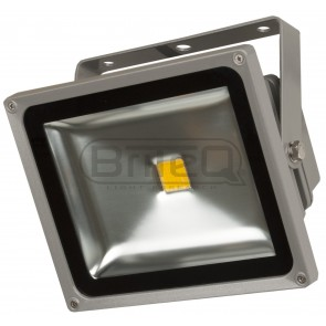 F1 LDP - FLOOD30 - WW - COB Led flood light