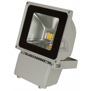 F1 LDP - FLOOD80 - WW - COB LED based flood light