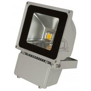 F1 LDP - FLOOD80 - WW - COB LED based flood light